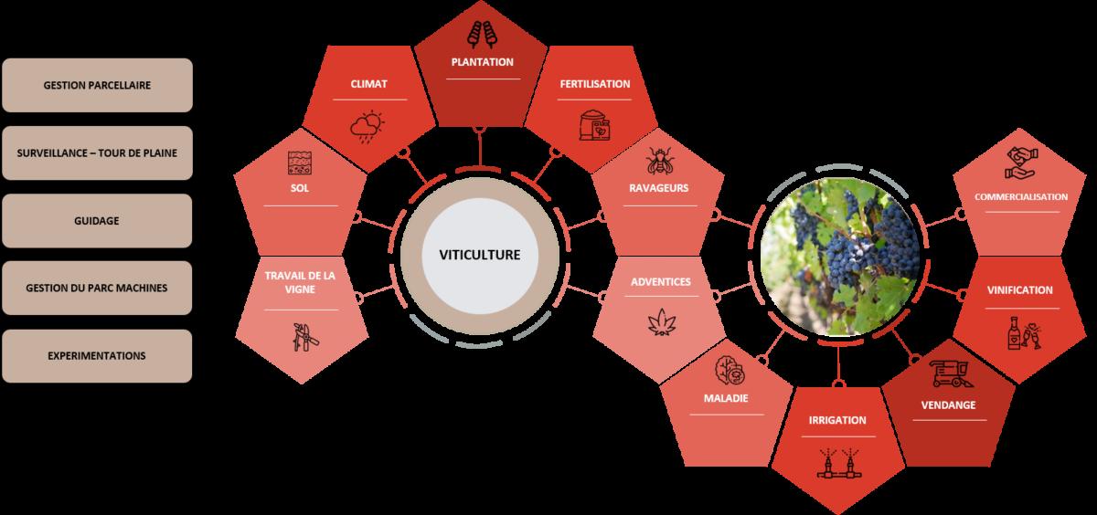 Itinéraire Viticulture